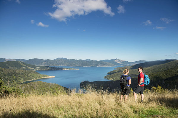 Marlborough  local activities  and attractions